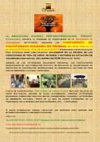 Campamento de Voluntariado Solidario en Senegal