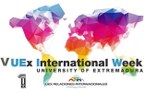 preview V International Week