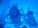 preview Buceo