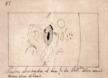 preview Dibujo de Valderrama de la llamarada solar que observó el 10 de septiembre de 1886 sobre una mancha solar (con su penumbra a rayas y la umbra negra). En ella se observa la llamarada con forma de renacuajo. El documento original se conserva en la Biblioteca del Instituto de Astrofísica de Canarias. / IAC