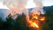 preview Incendios forestales
