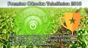 premios-catedra-telefonica-2019-proyectos-abiertos-1.jpg