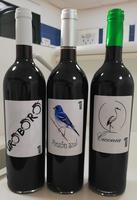 vinos-premiados.png